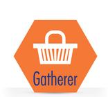 Gatherer Genotype